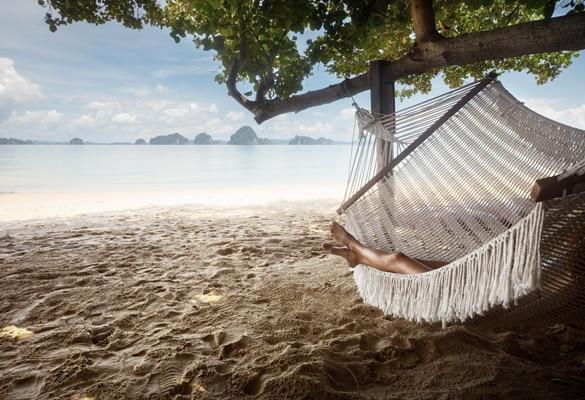 Vuelo de vacaciones